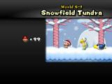 Snowfield Tundra