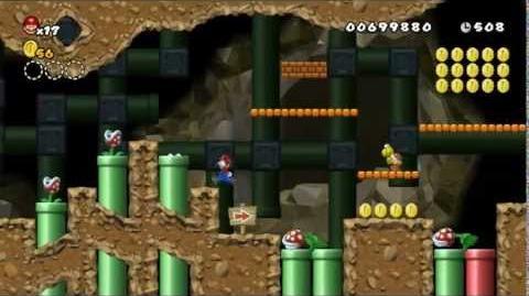 Newer_Super_Mario_Bros_Wii_World_2-2_Gushing_Gutter_Star_Coins