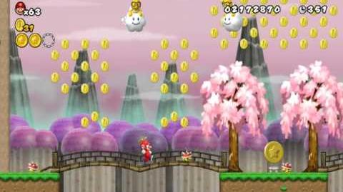 Newer_Super_Mario_Bros_Wii_World_4-1_Bamboo_Steppes_Star_Coins