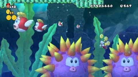 Newer_Super_Mario_Bros_Wii_Mini_Mega_Island_B-4_Cheepcheep_Creek_Star_Coins