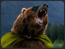 UltraBear.jpg