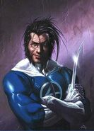 FF Wolverine