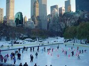 Family-vacations-central-park.jpg