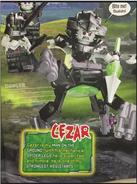 Magazine Cezar