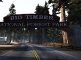 Big Timber Forest