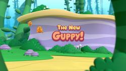TheNewGuppy!.png