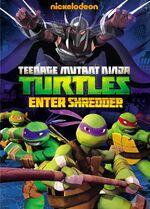 Enter Shredder DVD.jpg