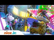 Playful Pups & Cute Cats! 🐶🐱 w- Blue's Clues & You, PAW Patrol & 44 Cats! - Nick Jr.