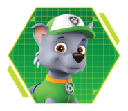 PAW-Patrol-character-Rocky