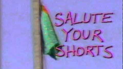Salute_Your_Shorts_Music_Theme_Song_Season_1