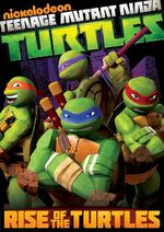 Rise of the Turtles DVD.jpg