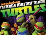 Teenage Mutant Ninja Turtles videography