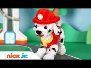 Pipe Cleaner Crafts w- PAW Patrol's Marshall, Blaze and Shimmer & Shine - Stay Home -WithMe Nick Jr.
