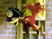 Pinwheel-Admiral-Bird-flying
