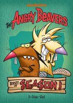AngryBeavers BestOfSeason1.jpg