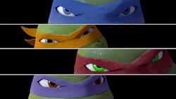 Turtles eyes.png