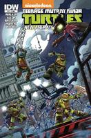 Teenage Mutant Ninja Turtles - New Animated Adventures comics issue 17