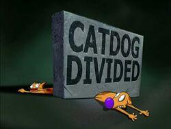 CatDog Divided.jpg