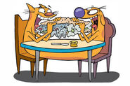 CatDog-Eating