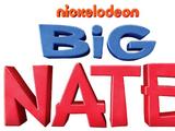 Big Nate (TV series)