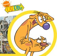 Catdog-storyboard-1-638