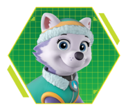 PAW-Patrol-character-Everest