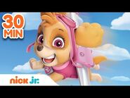 Best of Skye 🐶 PAW Patrol! - 30 Minute Compilation - Nick Jr.