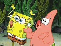 Club SpongeBob (201)