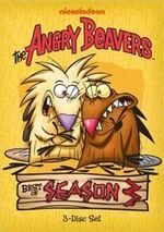 Angry Beavers Best of Season 3.jpg