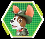 PAW-Patrol-character-Tracker