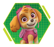 PAW-Patrol-character-Skye