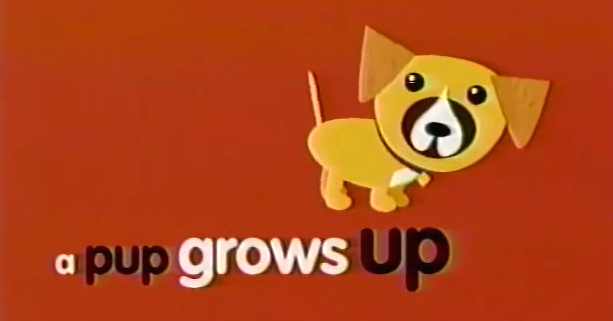 A Pup Grows Up