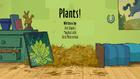 Plants!.png