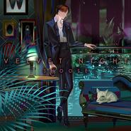 Velvet night