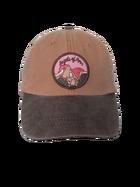 AOP-hat.png