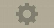 Large Gear (Automata)