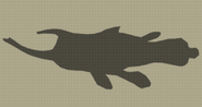 Beetle Fish