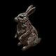 Hare Charm