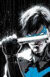 Richard Grayson (Prime Earth)