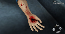 Tenmyouji wrist