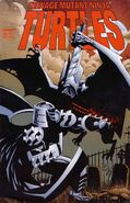 TMNT (Image) Vol 1 14