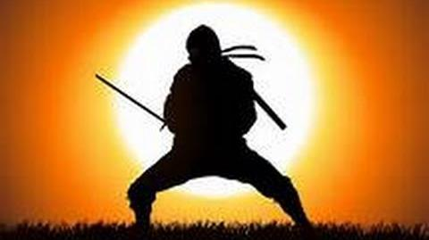 What was it like to be a ninja? - Part 1