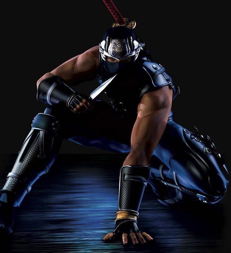 Ninja Gaiden Wiki