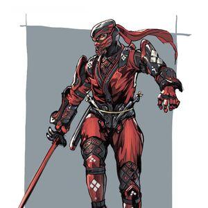 Costumes Ninja Gaiden Wiki Fandom +80 dodge for 2 turns. costumes ninja gaiden wiki fandom