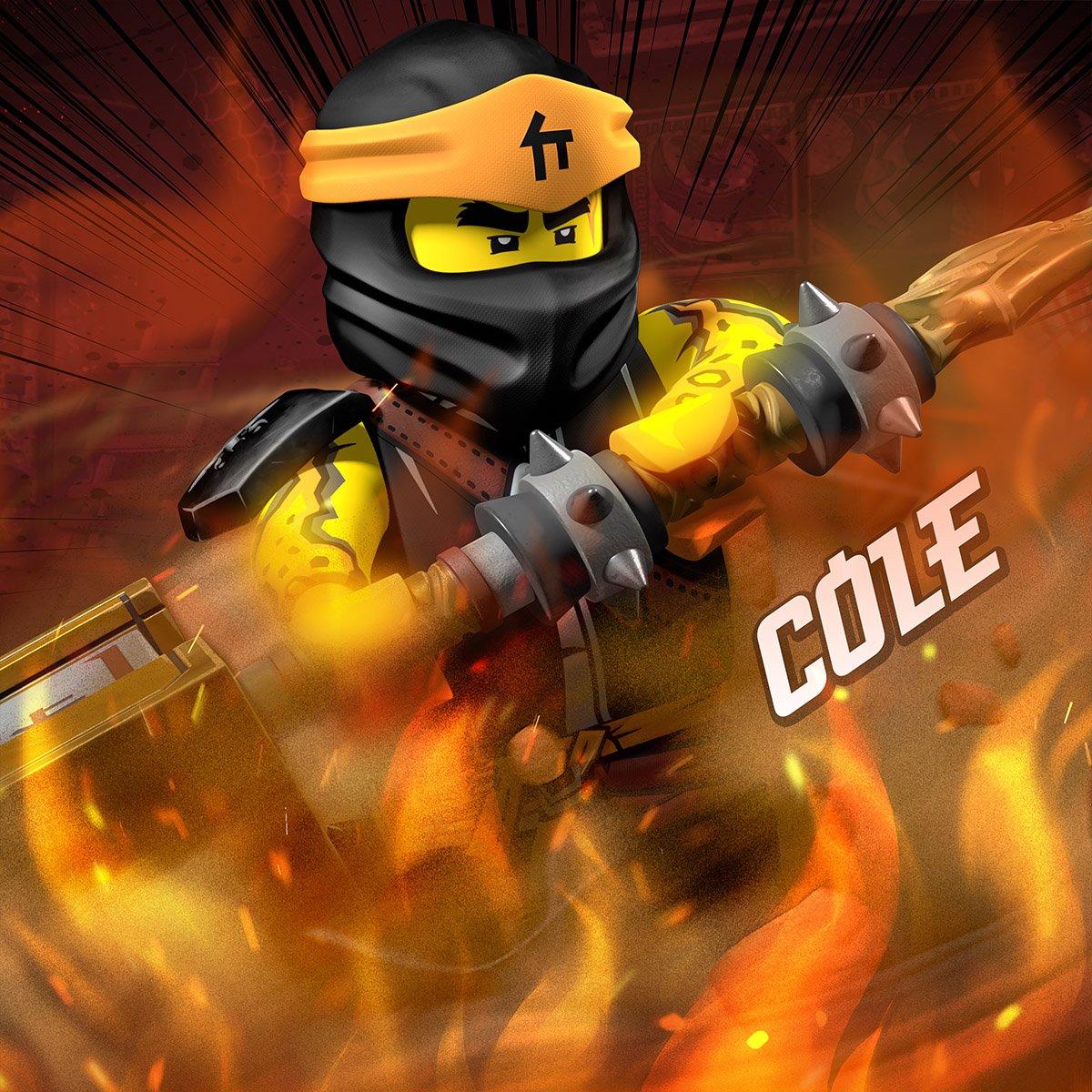 History of Cole (Secrets of the Forbidden Spinjitzu)