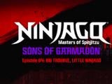 Wielkie kłopoty w małym Ninjago