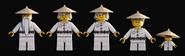 Wu CC Pixels models