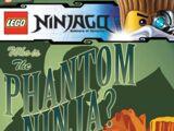 Who is the Phantom Ninja?