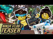 Ninja Vlog -3- It's Dragon Time..