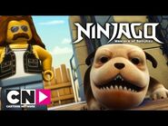 Ninjago - Dog Attacks Trespassers - Cartoon Network
